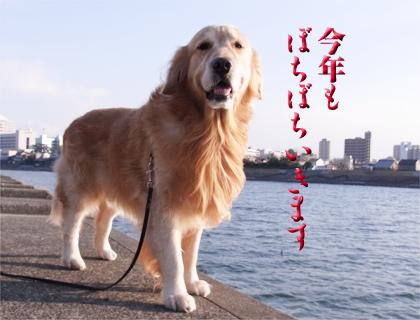 2012-01-20-01.jpg